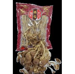 Tea Tree Mushroom|茶树菇