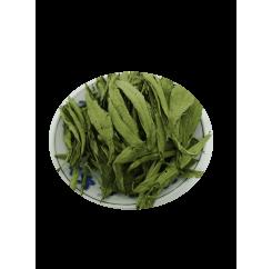 Stevia Leaves | 甜菊叶 | Tian Ju Ye