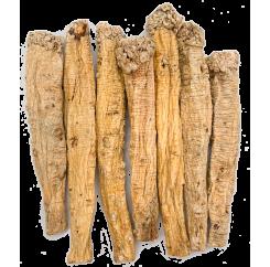 Codonopsis Extra Premium (King-sized)|特级党王