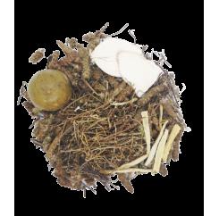 Liver Heat Clearing Tea| 清肝降火茶